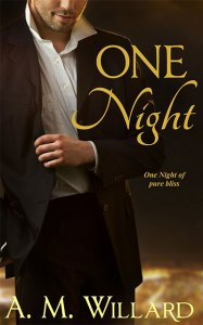 One Night by A.M. Willard