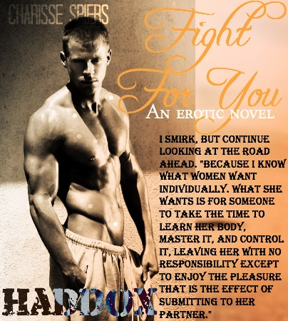 Fight for you by Charisse Spiers teaser