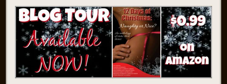 12 Days of Christmas: Naughty or Nice? Anthology and Event