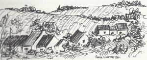 dessin de campagne par Pierre Linette
