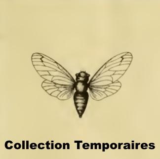 Temporaires