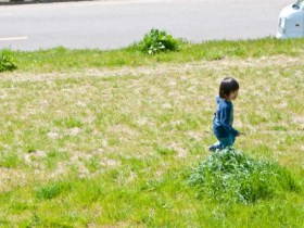 子ども(著作権フリーの写真より)