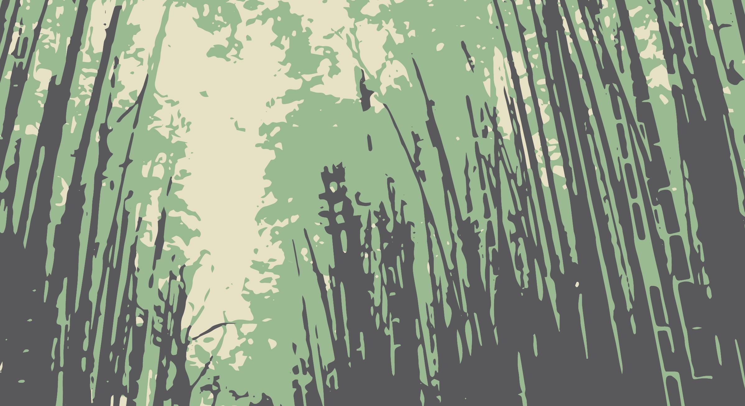 Dentro do Bosque
