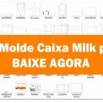 Molde caixa milk png