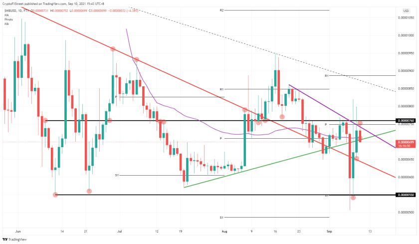 SHIB / USD daily chart