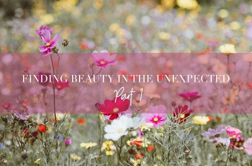 finding-beauty-in-the-unexpected-1