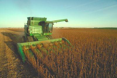 Agronegócio brasileiro: o que está bom pode e deve ficar ainda melhor