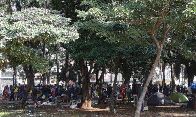 A pulverização da cracolândia em São Paulo