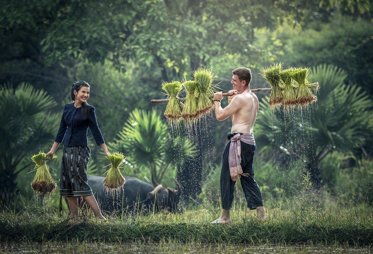 La relación entre ritos religiosos  y calidad de las cosechas