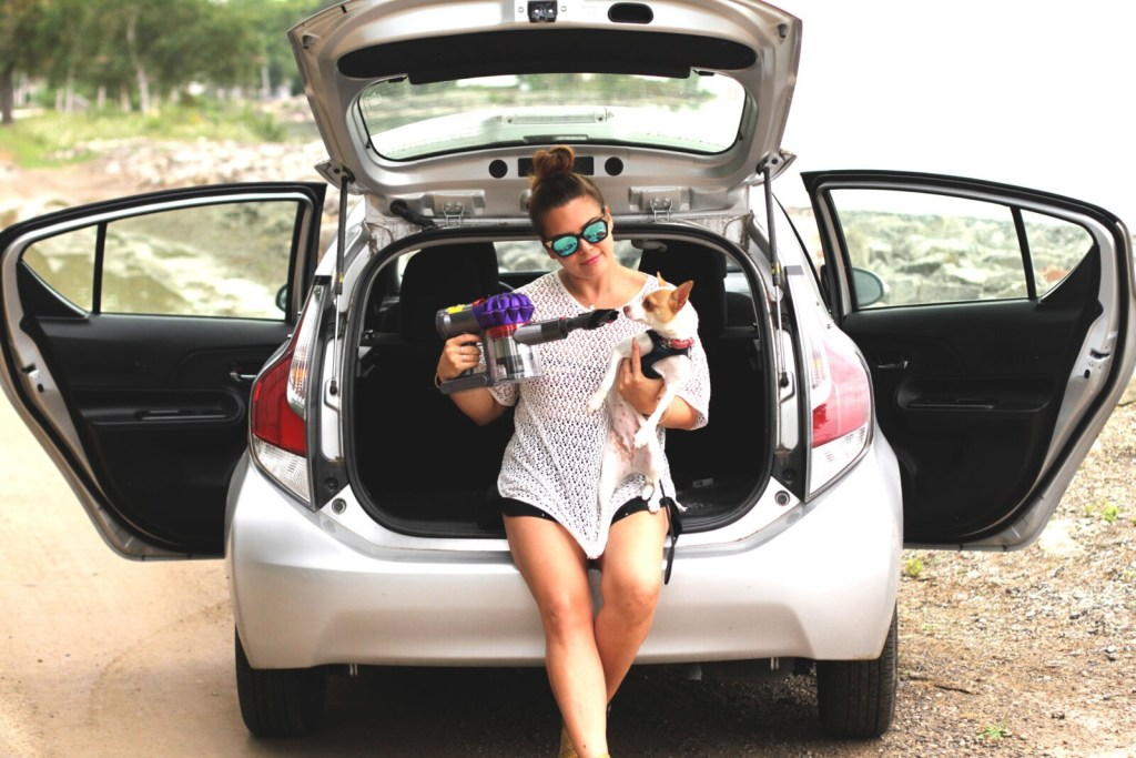 GracieCarroll - Travelling with Pets - Dyson S7 Car + Boat Review