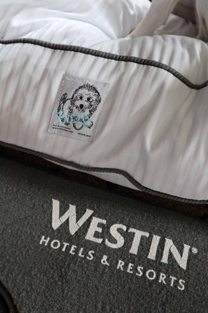 dog friendly hotels toronto - west harbour castle