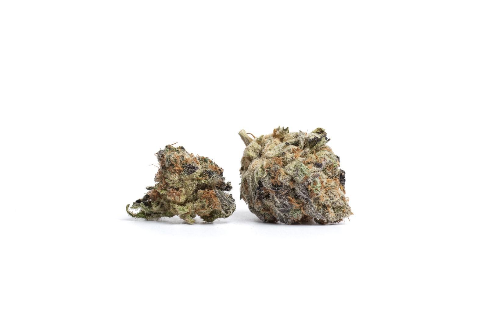 CannTrust cannabis edit seven 2018
