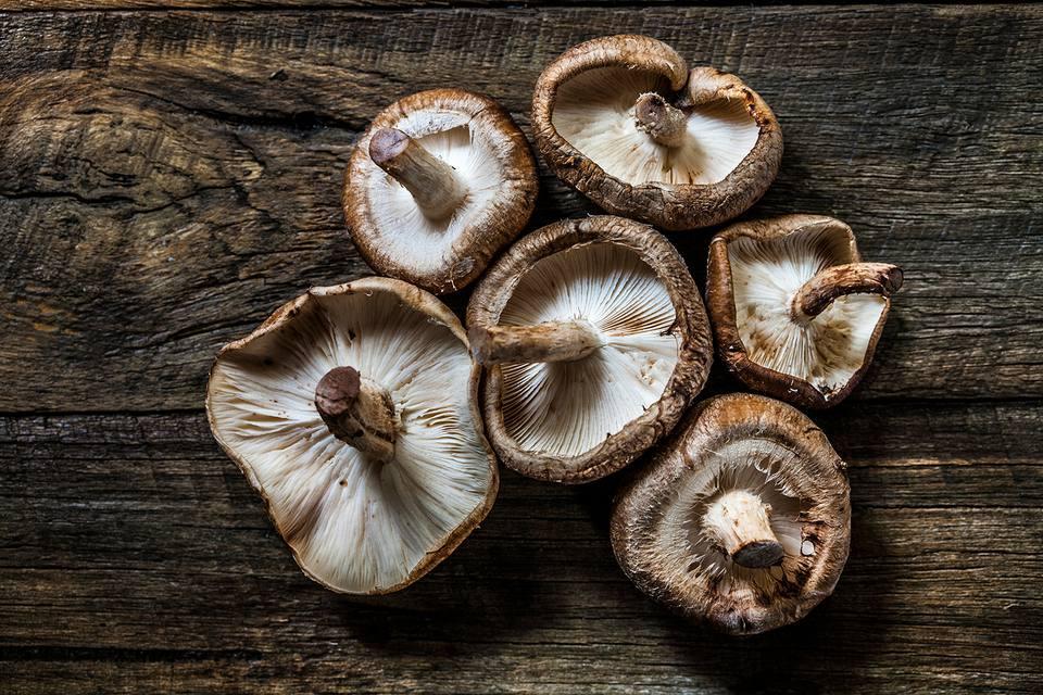 edit seven medicinal mushrooms shiitake