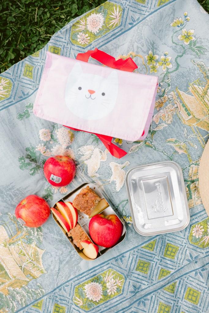 baby led feeding recipe ideas - baked oatmeal with apples recipe - envy apples