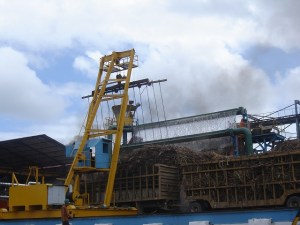 Sao luiz - Matriz - usinas e reservas 0151