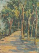 Thalia Flora-Karavia path-in-the-forest