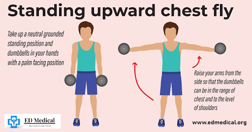 "illustration showing ""How to do Standing upward chest fly?"""