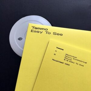 Tammo Hesselink – Easy To See [NOUS020]