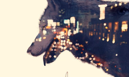 Eco Releases The 'Wolves' On This Album!