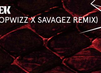 showtek - swipe dropwizz x savagez remix