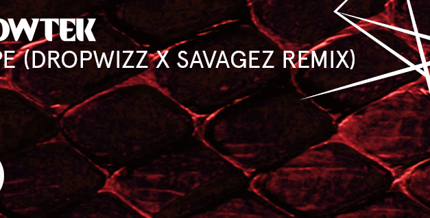 "Dropwizz & Savagez Remix Showtek's ""Swipe""!"
