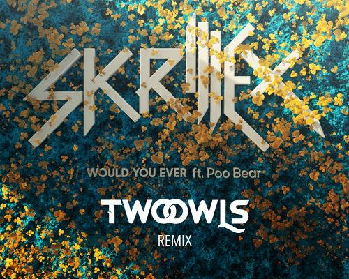Two Owls Remix Skrillex S Would U Ever Edm Identity