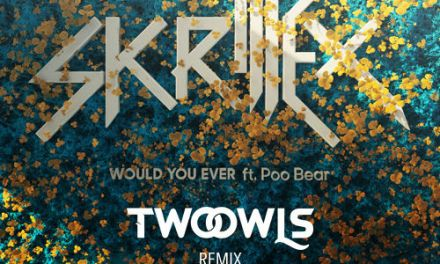 "TWO OWLS Remix Skrillex's ""Would Ü Ever"""