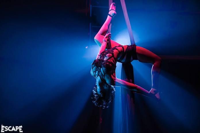 Escape Psycho Circus 2017 Aerial Performer