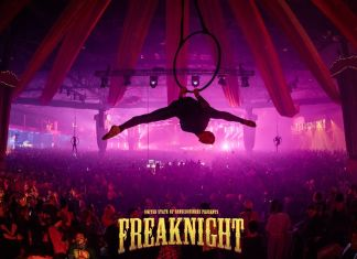 FreakNight 2017 Aerial Performer