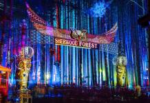 Electric Forest 2017 Sherwood Forest
