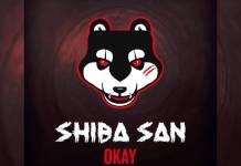 Shiba San Okay