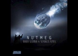 Infected Mushroom - Nutmeg (Randy Seidman & Skyknock Remix)