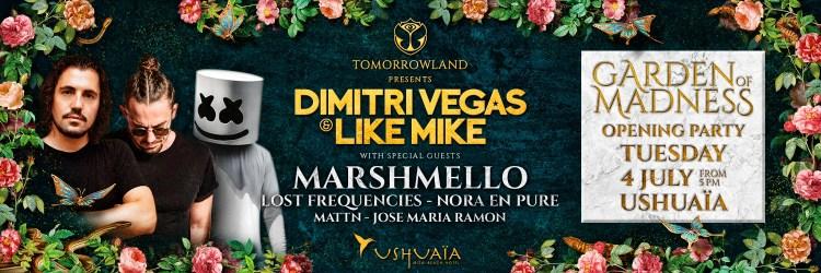 Dimitri Vegas Flier