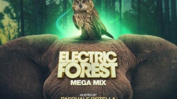 electric forest megamix
