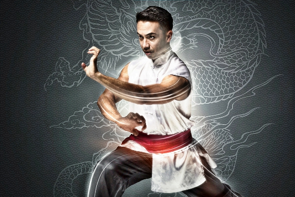 laidback luke kung fu class ade 2017