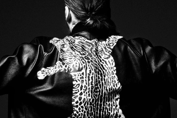 steve angello pusha t freedom