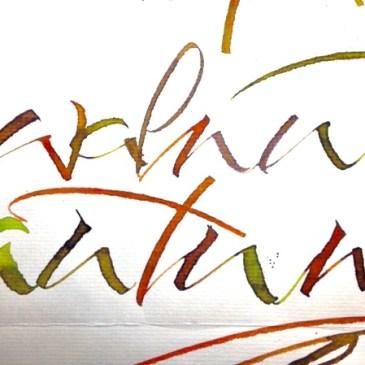 Ink Drops