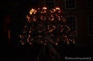 Dracula's Fire Garden (17)