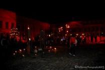 Dracula's Fire Garden (36)