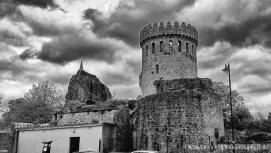 Nenagh Castle (15)