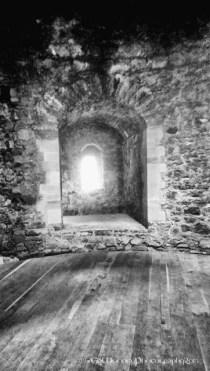 Nenagh Castle (6)