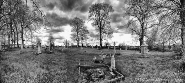 Yew Tree Cemetery (21)