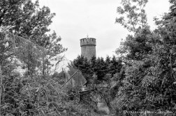 Hill of Allen (7)