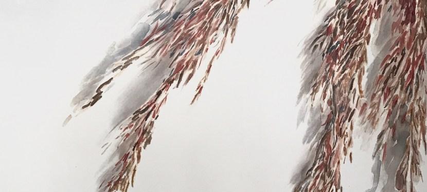 AQUARELA EXPLORADA: Obras de rio-pretenses destacam pela técnica de pintura transparente – Eliara Bevilacqua, Jane Ferrari e Edna Stradioto expõem obras de arte feitas com a técnica de pintura conhecida pela transparência, luminosidade e espontaneidade