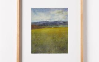 Pampeada faz parte da série Pampas 2020, e é uma aquarela de Capim dos Pampas de Edna Carla Stradioto e foi feita em papel 100% aldogão, livre de ácido, da marca Hahnemühle Anniversary Edition, 425gsm, de 36x48cm, de 2020.
