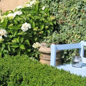 Intimate garden seats tucked amongst the foliage in teh Ednovean Farm Garden