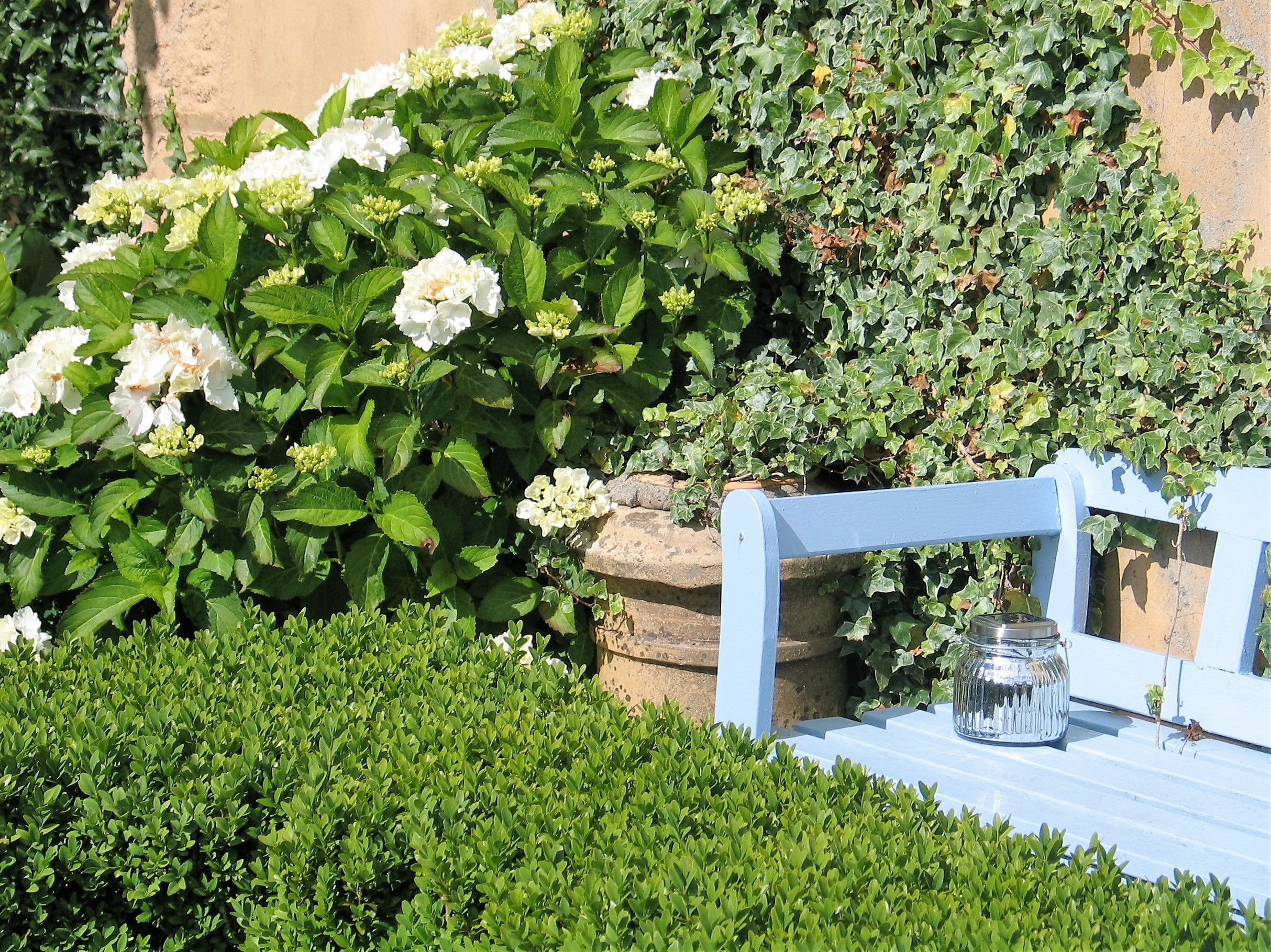 Intimate garden seats tucked amongst the foliage in teh Ednovean Farm Garden