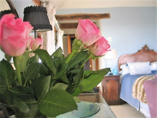 romantic pink roses - luxury Bed and Breakfast room