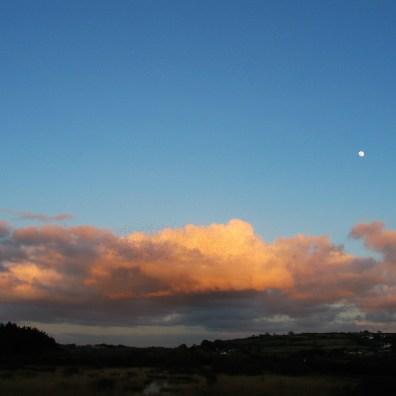 dusk over a marsh with full moon