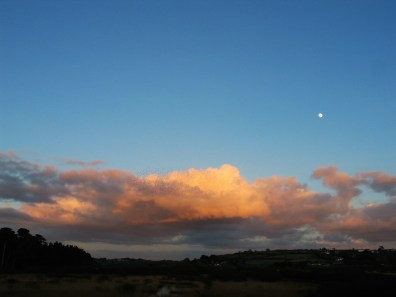 dusk over a marsh with full moon